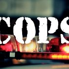 Articles TVLine: retours de Cops (Sorta), pilote ABC d'Arrow Vet et plus