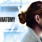 Grey's Anatomy - Episode 17.05 - Fight the Power - Communiqué de presse