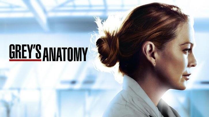 """Grey`s Anatomy – Ma fin heureuse – Examen: """"Le sable n'est pas réel"""""""