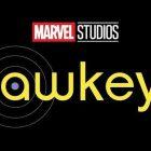 Hawkeye - Vera Farmiga, Florence Pugh, Tony Dalton et bien d'autres rejoignent le casting