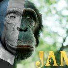 Jane: Apple TV + commande une série Live-Action / CGI Kids basée sur la jeune Jane Goodall