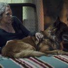 'The Walking Dead': Deux amis divergent dans un bois infesté de marcheurs… (RECAP)