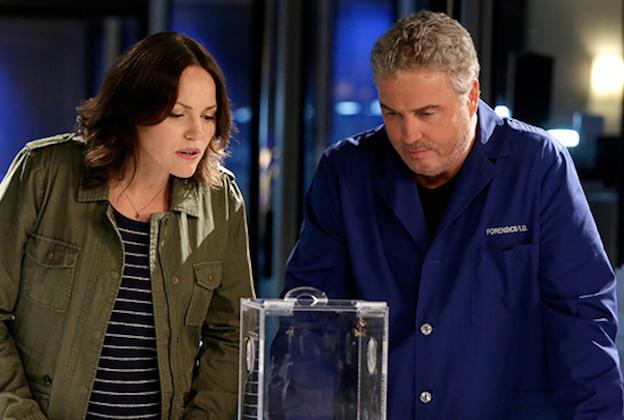 CSI Sequel Series officiellement Greenlit à CBS;  Wallace Langham revient aux côtés de William Petersen, Jorja Fox