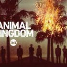 Animal Kingdom - Saison 6 - Jasper Polish, Darren Mann + 2 autres à reproduire