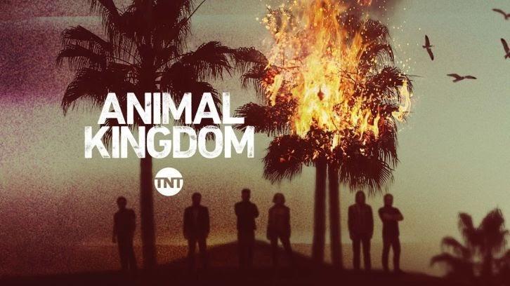 Animal Kingdom – Saison 6 – Jasper Polish, Darren Mann + 2 autres à reproduire
