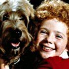 NBC définit `` Annie '' comme le prochain événement musical en direct du réseau