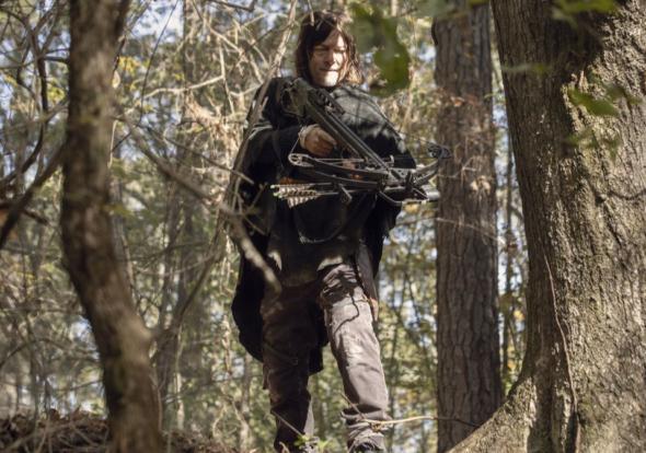 The Walking Dead : Saison 11 ;  AMC + publiera des offres spéciales Origins avant la dernière saison