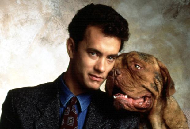 Turner & Hooch : la série Disney+ tue le personnage de Tom Hanks — Regarder la bande-annonce