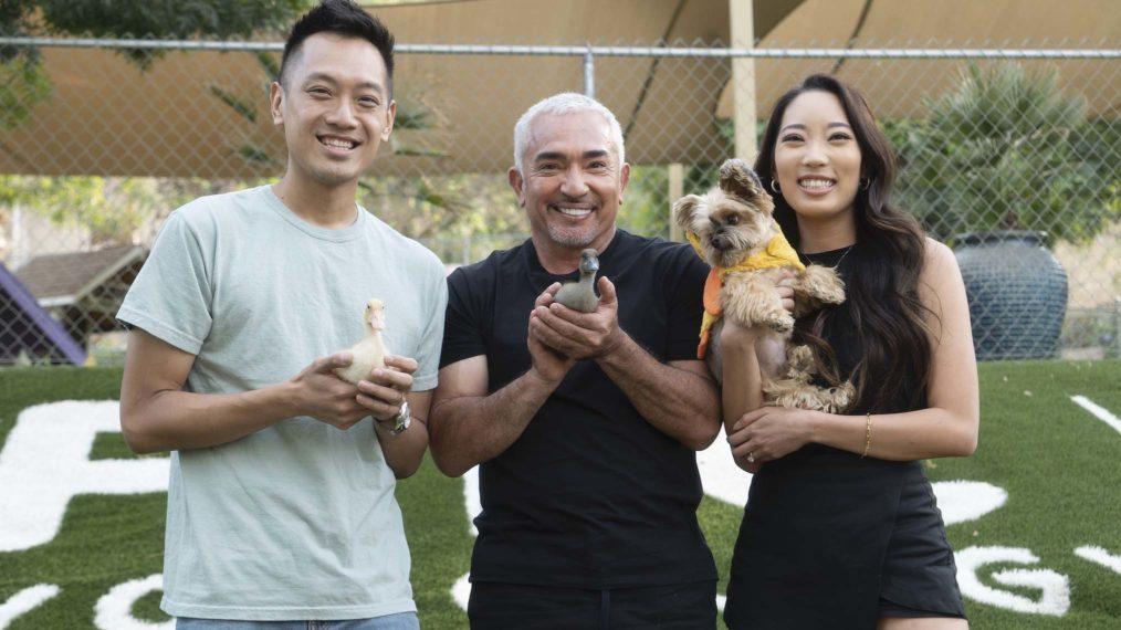 Premier aperçu: Cesar Millan revient à la télévision avec «Better Human Better Dog» à Nat Geo (VIDEO)
