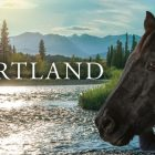 Heartland : Saison 15 ?  La série UPtv a-t-elle déjà été annulée ou renouvelée ?