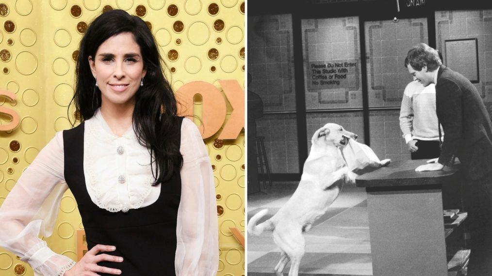 TBS réinvente le segment «Stupid Pet Tricks» de David Letterman en tant que série de variétés avec Sarah Silverman