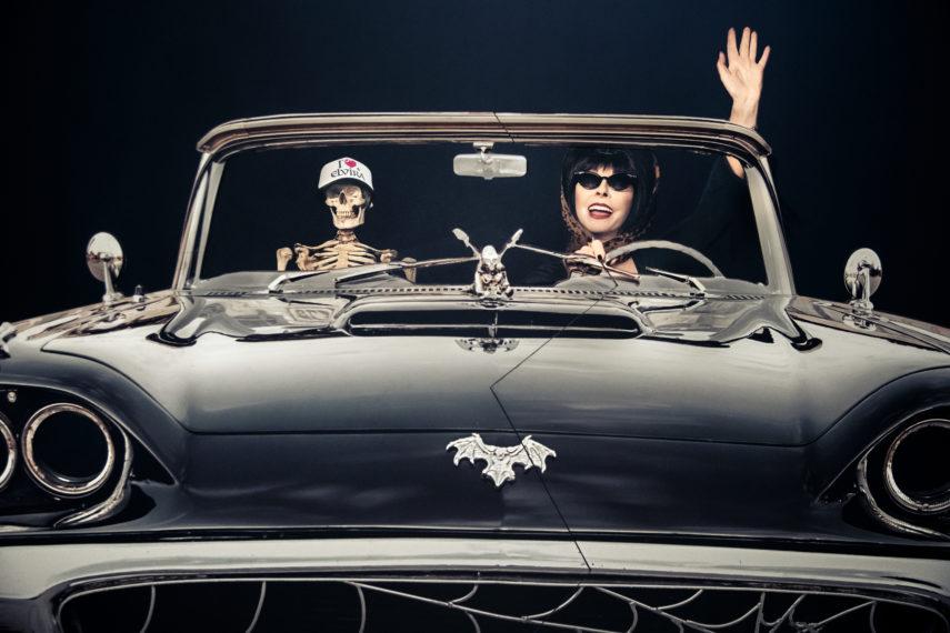 Spécial 40e anniversaire d'Elvira
