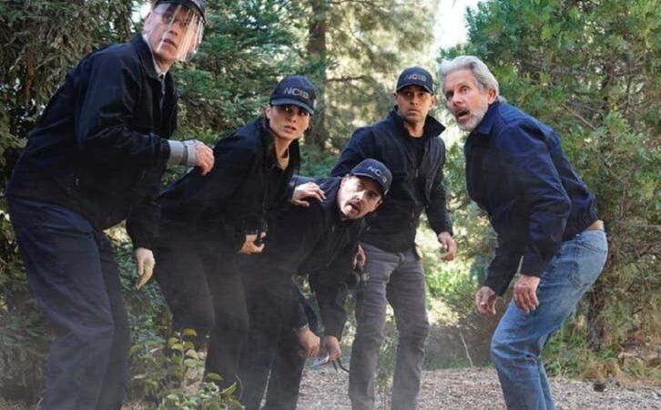 NCIS – Épisode 19.05 – Affrontez l'étrange – Communiqué de presse