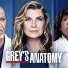 """Grey's Anatomy - Here Comes The Sun - Critique : """"Être courtisé"""""""